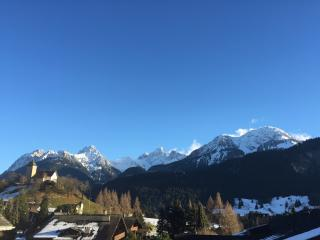 Beautiful apartment in Chateau d'Oex, near Gstaad