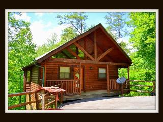 EnjoyThe Hiking Bear minutes to Pigeon Forge Wifi, Sevierville