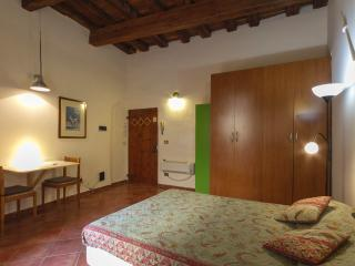Nice studio in Piazza Pitti with terrace, Florence