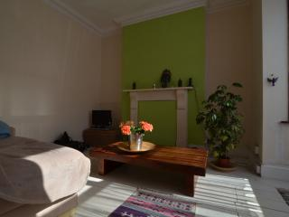 Terraced Town House Close to the City Centre, Plymouth