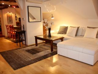 Five Star Central Penthouse Prague 1 16th Centry