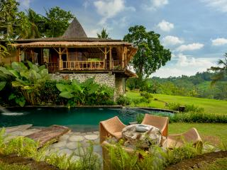 Fabulous Natural Home Ubud, pool, stunning views, Sayan