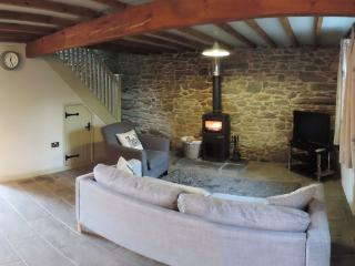 Contemporary, cosy, with log fire 195208, Lampeter
