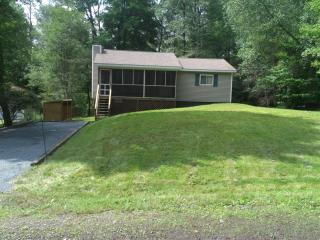 Affordable, WIFI, HDTV, 3 Bed, Fireplace, Location, Lago Pocono