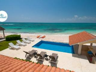 Magnificent Villa Carolina with Air Conditioning, Gourmet Kitchen, Oceanside Pool, Playa Paraiso