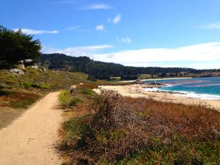Lovely Contemporary Retreat- 0.5mi. walk to Beach, Carmel