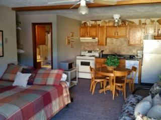 Aspen West #3S - Main Street Studio, Full Kitchen, WiFi, Satellite TV, Red River