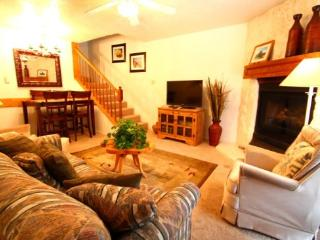 Valley Condos #109 - WiFi, Washer/Dryer, Community Hot Tubs, Playground, Creek, Red River