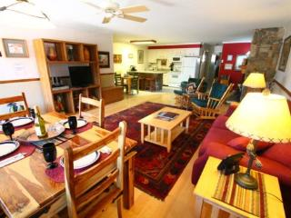 Ski View Condo #11 - Ski Views!, In Town, Single Level, King Bed, WiFi, Common Areas, Picnic, Game Room, Laundry, Red River