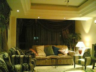 Fully furnished apartment for rent in cairo egypt, Cairo