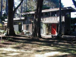 Chapman Point Cottage... a warm, comfortable cottage, a mile from Mendocino.