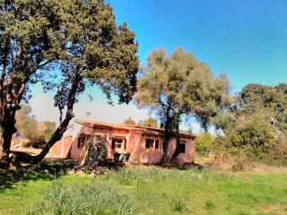 Your Finca on Mallorca 4 -> Two People with W-Lan, Capdepera