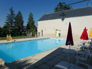 Lovely Loire Valley apartment with 2 bedrooms and views across a green garden and shared pool, Chisseaux