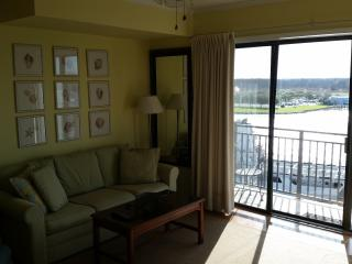 Waterfront Downtown Location STUNNING VIEWS!, Wilmington