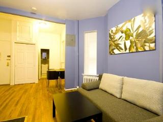 East 65th Street 1 BR, New York City