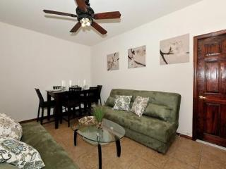 Charming 2BR Apartment, Maryknoll