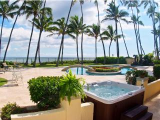 Epic Kahala Oceanfront Home Able to Host to 14!, Honolulu
