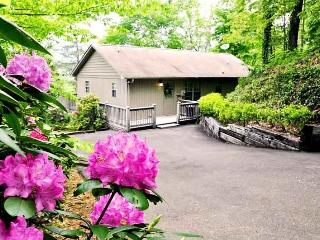 Big Oaks Pointe -- Less Than A Mile Walk from Downtown With Wooded Seclusion, a Seasonal View, and Sheltered Hot Tub, Bryson City