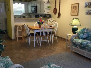 South Padre Island  condo 1/2 block from the beach, Isla del Padre Sur