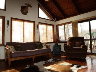 Spring rate SPECIAL - 3000sf, with Fireplace, Wifi, Bushkill