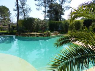 Villa with infinity pool and air cond. near Cannes, Roquefort les Pins
