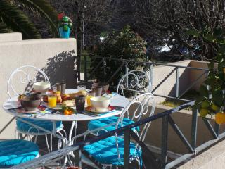 luxury apartment Grasse French Riviera, Valbonne