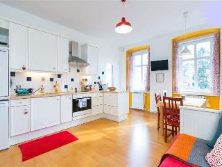 50m²  charming  fresh  and  bright !, Vienna
