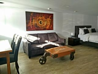 New Spacious 1br suite downtown Toronto