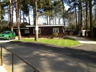 Luxury chalet for hire in Wokingham