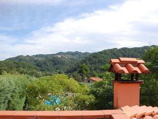 12km from sandy beaches of Versilia- Small farmhouse in a quiet position surrounded by trees. SAL OLI, Lucca