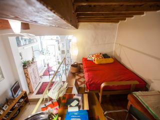 beautiful loft in the heart of florence, Florence
