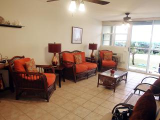 #4 Beachfront Apartment - Jobos Beach Isabela PR