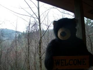 4th night FREE!! Helton Falls Lodge-Bear Getaway, Blairsville
