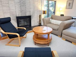 Large studio in Silver Lake with fireplace & deck, Los Angeles