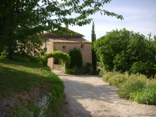 Provencal farmhouse with heated pool, sleeps 10, Apt