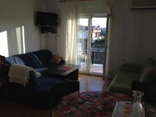 Apartment Emi 1 for 4 with AC and parking, Novigrad
