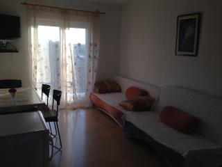 Apartment Emi 2 for 4 with terrace and AC, Novigrad