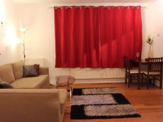 Holiday flat  in central london / St john's wood, Londres