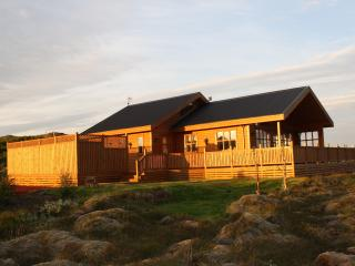 Cozy and spacious, great location, Selfoss