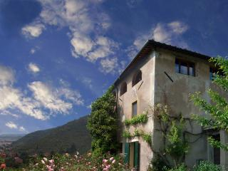 VILLA WITH PANORAMIC VIEW AND LARGE GARDEN, Calci