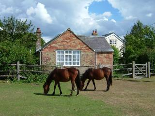 Old Stables Cottage in the New Forest, Beaulieu