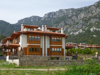 Spacious 4 Bed Apt by River with Mountain Views, Akyaka