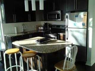 2beds and 2baths Luxury Condo Downtown Parliament, Ottawa