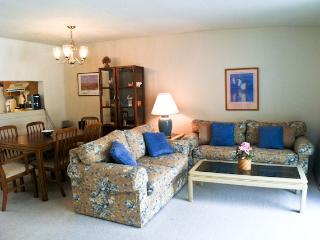 Ocean Edge - Straight Staircase, sleeps 6 with A/C & Pool passes (fees apply) - BI0579, Brewster
