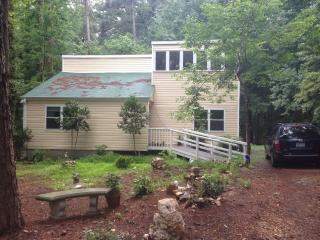 Hypoallergenic & beautiful quiet house in woods, Chapel Hill