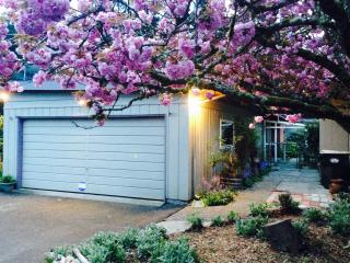 Olympia Home With Big Private Yard!