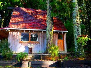 Kauri Cottage, Waitakere City