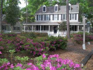 New Listing... Cozy Cottage w/Extra Amenities, Murrells Inlet