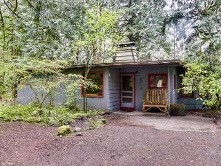 Pet-friendly with private hot tub, riverfront, room for nine, Rhododendron