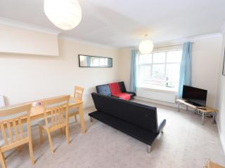 2 Bed Budget Apt Nr City Sleeps 6 (l), Manchester